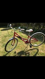 Pendleton bike