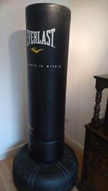 Freestanding punchbag