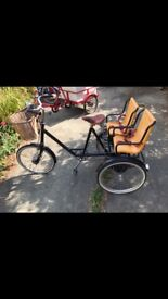 Pashley tricycle with child seats