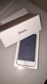 Brand New iPhone 7 Rose Gold 128gb
