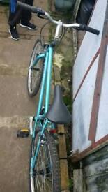 ladis bike