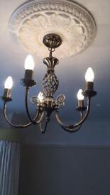 1 ceiling light