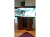 JUWEL RIO FISH TANK FOR SALE 180 LITER IN DARK WOOD COLLAR