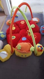 Mammas and pappas lotty baby activity play mat