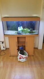 Juwel rio 180 litre fish tank and stand good condition delivery available