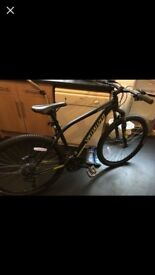 Specialised Pitch Hardtail Mountain Bike