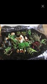 Job lot of fish tank fake plants / Ornaments