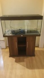 Juwel rio 180 litre fish tank and stand in dark wood
