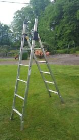 Youngmans 3-Way Combination Ladder