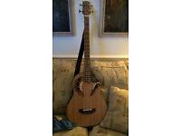 Electro Acoustic bass guitar