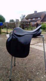 Albion selecta saddle
