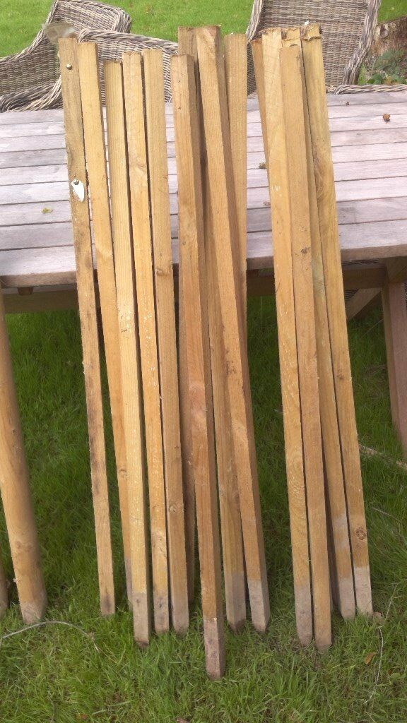120 cm (4') Tree Stakes