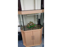 AQUA ONE 180 LITER FISH TANK FOR SALE FULL SET UP IN PERFECT CONDITIONS