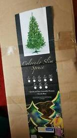 6ft trees for sale various sizes