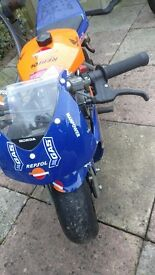 Blata elite 4.2 Pocket bike