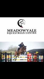 Meadowvale Equestrian Centre Pony lessons