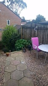Double room for rent penryn close to uni. 450pcm includes all bills
