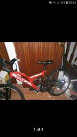 Kids/ adult bike