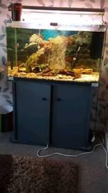 2 x fish tanks
