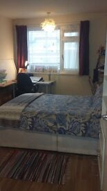Nice double room in Mile End Flat