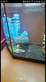 Aquarium bubble chest