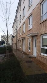 2 bed town centre flat for swap in motherwell