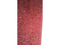 Mottled carpet remnant