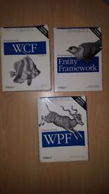 BARGAING!!! SELLING THESE 3 PROGRAMMING BOOKS FOR THE PRICE OF 1