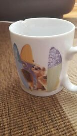 Surfing hamster mug