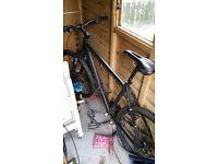 Mens reveloution bike