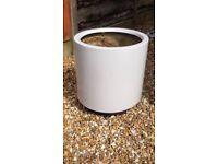 Indoor planter £4