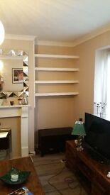 Polish painter decorator service internal external