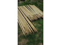 Used tree stakes/posts