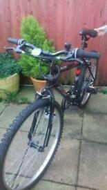 Activ Flyte Bike