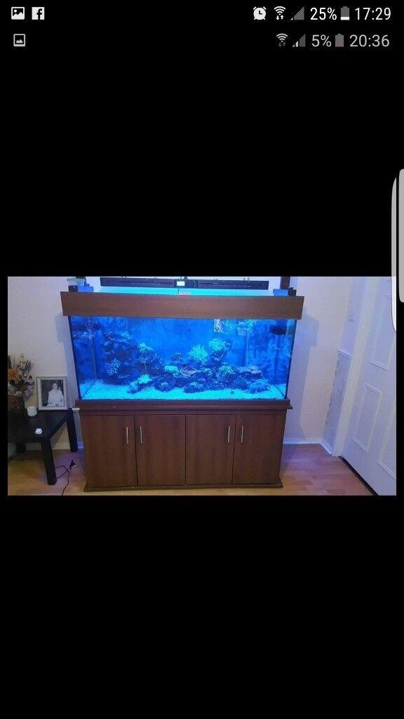 MARINE FISH TANK 5X2X30 INCH £450 ONO