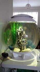 Biorb halo 30l fish tank white