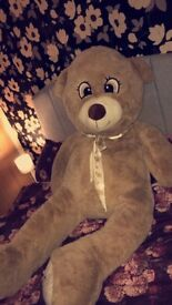 Massive life sized teddy bear. Immaculate condition. Hasn't been touched.