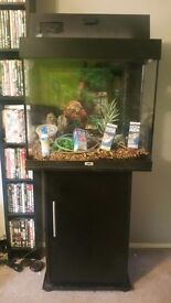 Juwel lido 120 tank and stand plus extras