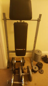 Weight bench with weights, dumbells