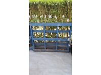 FREE 2 Pallet Planters - Painted Blue