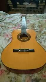 Herald HL34 4/4 Acoustic Guitar Bargain