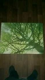 Next tree canvas