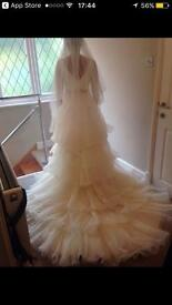 Pepe Botella wedding dress