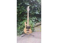 Cort GB75 5 String Bass Guitar