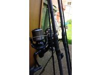 2 x daiwa cross cast 5500 qda