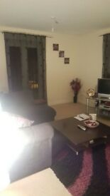 EXTRA LARGE IMMACULATE DOUBLE ROOM TO RENT