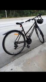 Bicycle Merida redwood