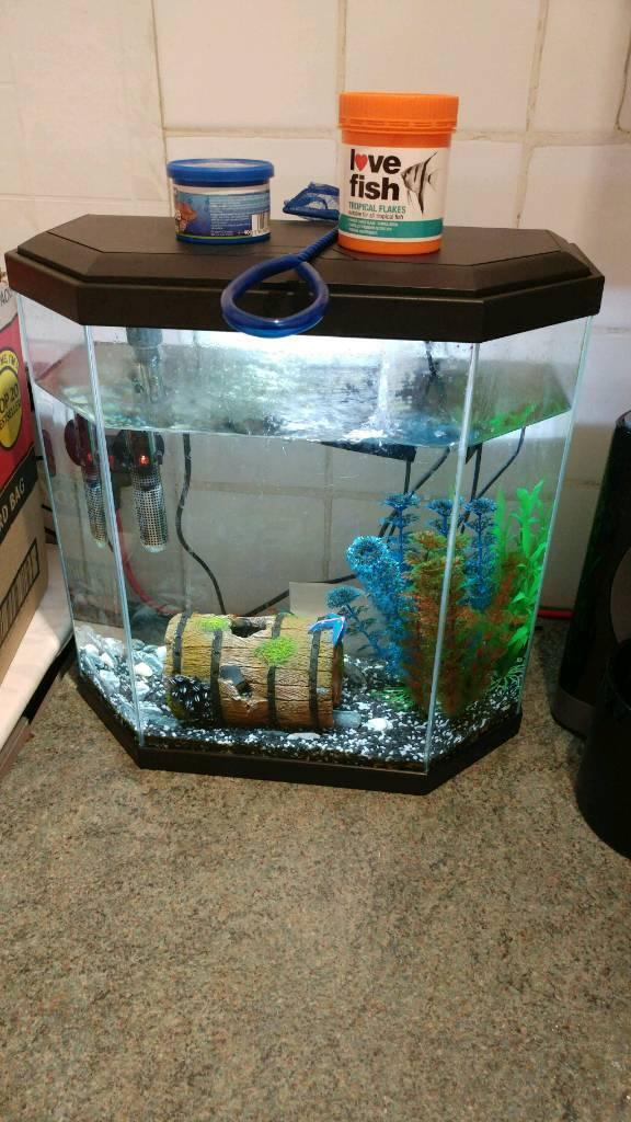 25L Fish Tank & 7 Fish