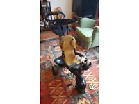 Black and Gold Smart Trike 4 in 1