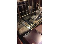Glass table with 4 chairs (Bronze Effect)